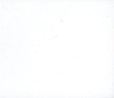 20. Blanco